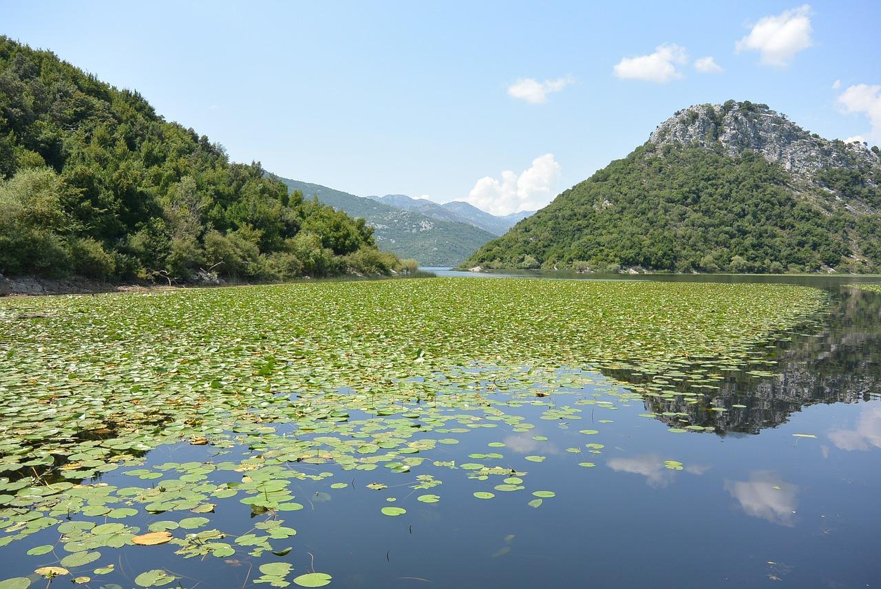 skadar-lake-469973_1280.jpg